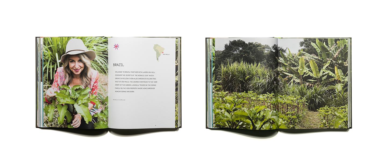 pascher-heinz-weleda-global-garden-book-content-01