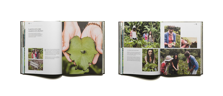 pascher-heinz-weleda-global-garden-book-content-02