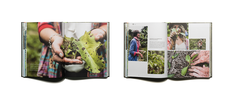 pascher-heinz-weleda-global-garden-book-content-03