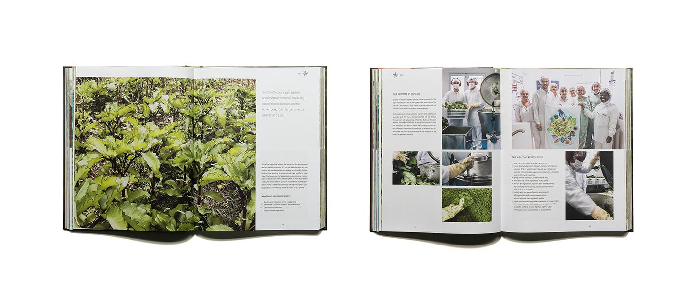 pascher-heinz-weleda-global-garden-book-content-04